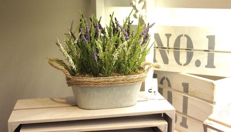Macetero y flores de lavanda. Exclusivas Camacho